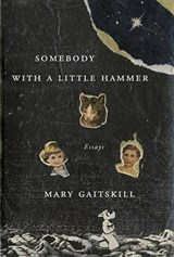 Somebody With a Little Hammer | Mary Gaitskill | 9780307378224