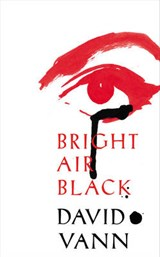 Bright air black | David Vann | 9780434023349