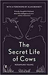 Young*Secret Life of Cows | Rosamund Young | 9780571336777