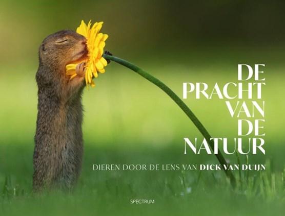 De pracht van de natuur