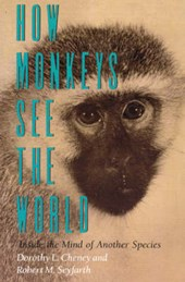 How Monkeys See the World