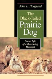 Black Tailed Prairie Dog: Social Life Of a Burrowing Mammal