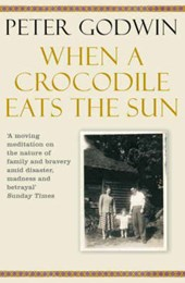 When A Crocodile Eats the Sun | Peter Godwin |