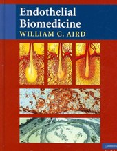 Endothelial Biomedicine