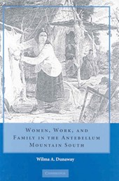 Women, Work, and Family in the Antebellum Mountain South