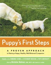 Puppy's First Steps