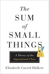Sum of small things | Elizabeth Currid-halkett | 9780691162737
