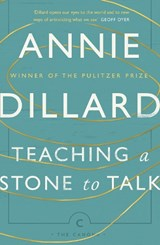 Teaching a Stone to Talk | Annie Dillard | 9781782118855
