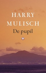 De pupil | Harry Mulisch |