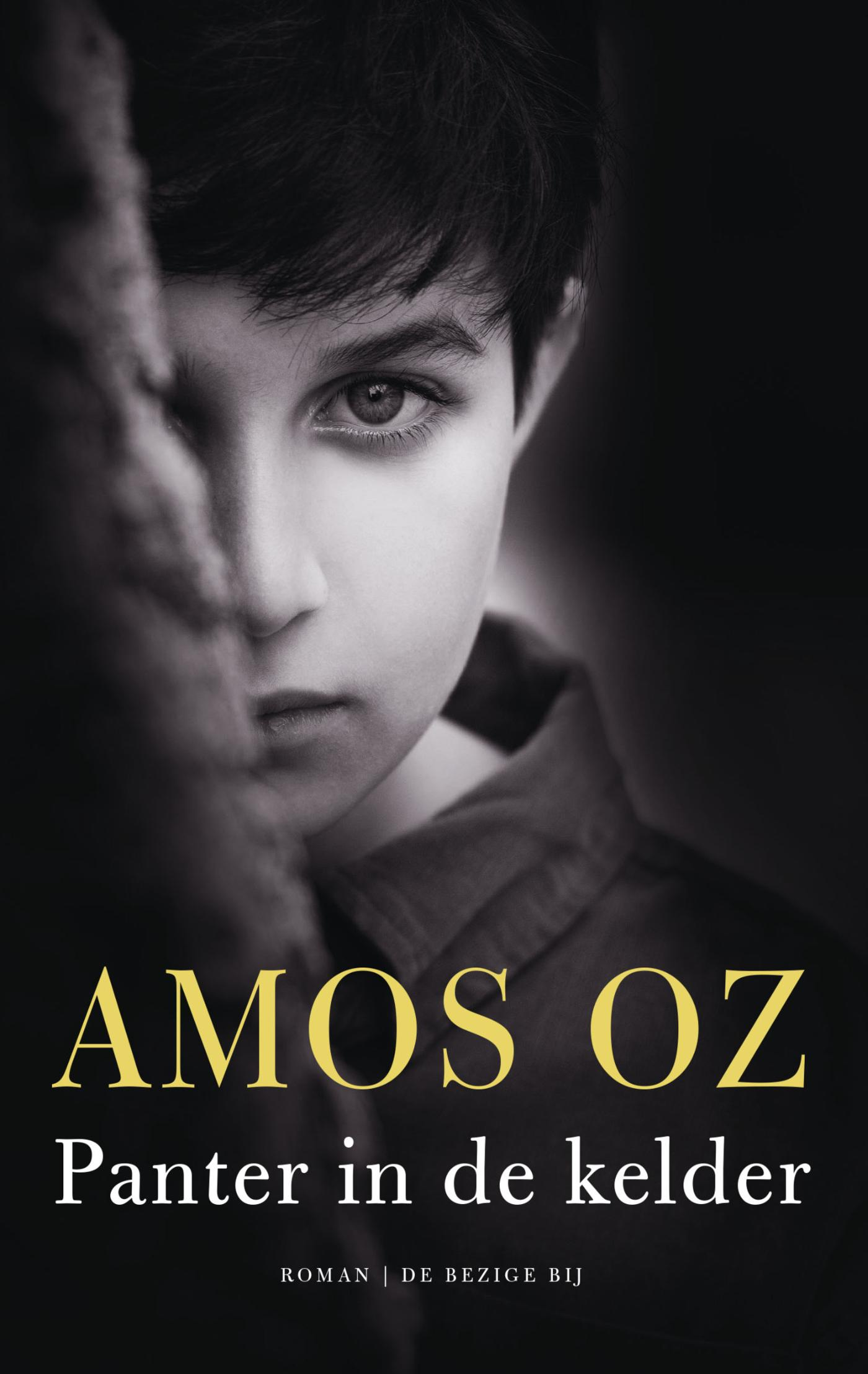 Panter in de kelder | Amos Oz |