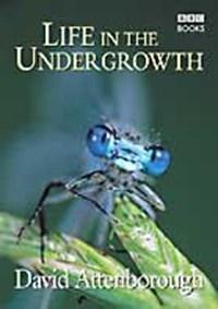 Life in the Undergrowth | David Attenborough |