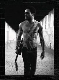Lenny kravitz | Lenny Kravitz ; Anthony DeCurtis |