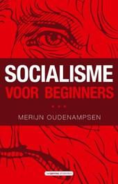 Socialisme voor beginners