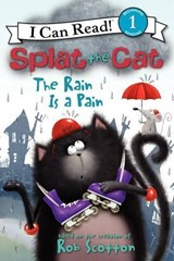 The Rain Is A Pain | Amy Hsu Lin |