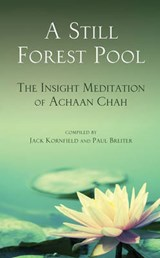 A Still Forest Pool | Achaan Chah |