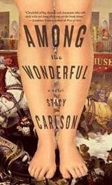 Among the Wonderful | Stacy Carlson |