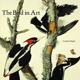 The Bird in Art | Caroline Bugler |