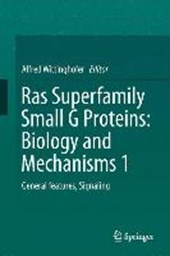 Ras Superfamily Small G Proteins: Biology and Mechanisms