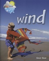 Wind | Honor Head |