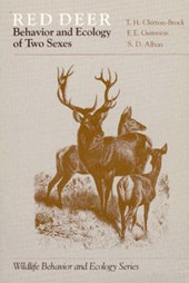 Red Deer (Paper Only)