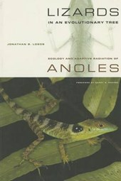 Lizards in an Evolutionary Tree - Ecology and Adaptive Radiation of Anoles