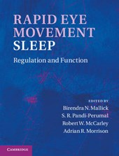Rapid Eye Movement Sleep