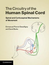 The Circuitry of the Human Spinal Cord