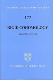 Rigid Cohomology