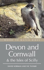 Where to Watch Birds in Devon and Cornwall