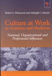 Culture at Work in Aviation and Medicine