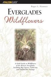 Everglades Wildflowers