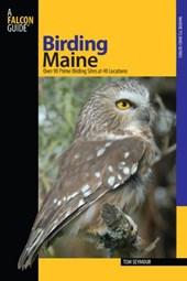 Birding Maine