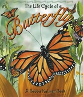The Life Cycle of a Butterfly [With CD]