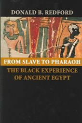 From Slave to Pharaoh - The Black Experience of Ancient Egypt