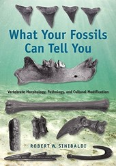What Your Fossils Can Tell You