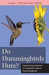 Do Hummingbirds Hum?