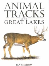 Animal Tracks of the Great Lakes