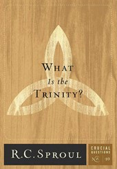 WHAT IS THE TRINITY