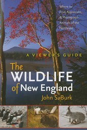 The Wildlife of New England