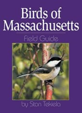 Birds of Massachusetts