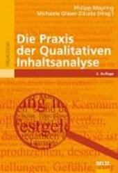 Die Praxis der Qualitativen Inhaltsanalyse