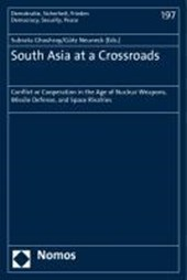 South Asia at a Crossroads