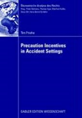 Precaution Incentives in Accident Settings