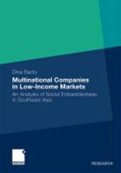 Multinational Companies in Low-Income Markets