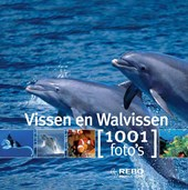 Vissen en walvissen 1001 foto's