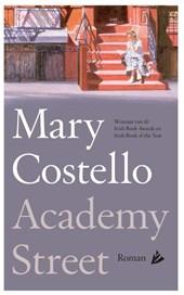 Mary Costello - Academy Street