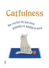 Catfulness | Paolo Valentino | 9789022581216