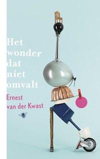 Het wonder dat niet omvalt   Ernest van der Kwast  