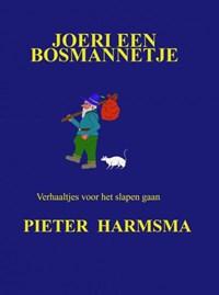 Joeri een bosmannetje | Pieter Harmsma |