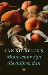 Maar waar zijn die duiven dan | Jan Siebelink | 9789403182902